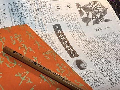 20160522nikkei