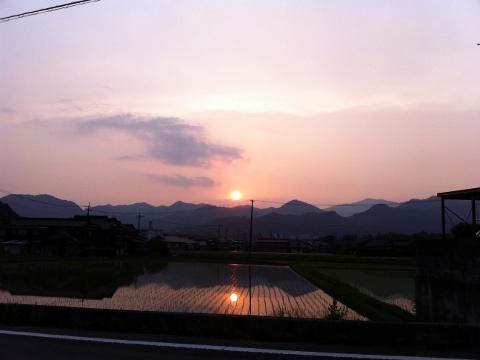 田植えの季節の夕暮れ