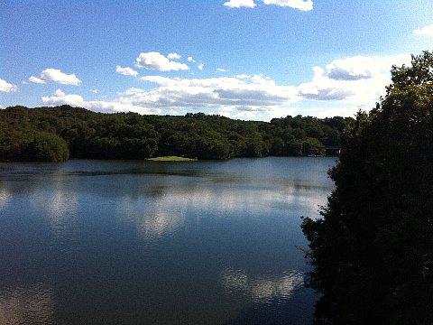 敷地内の鳴滝湖