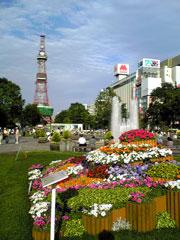 大通公園とテレビ塔