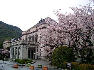 県政資料館に咲く桜