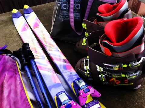 処分スキー