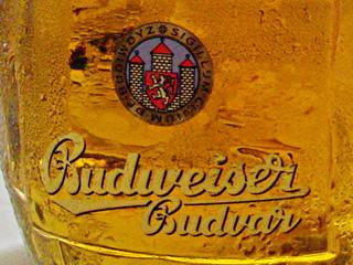 チェスケー・ブディェヨヴィツェ(České Budějovice)